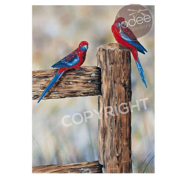 Rosellas wildlife painting by Jodie Kimpton on Princeton Artist Brush Co